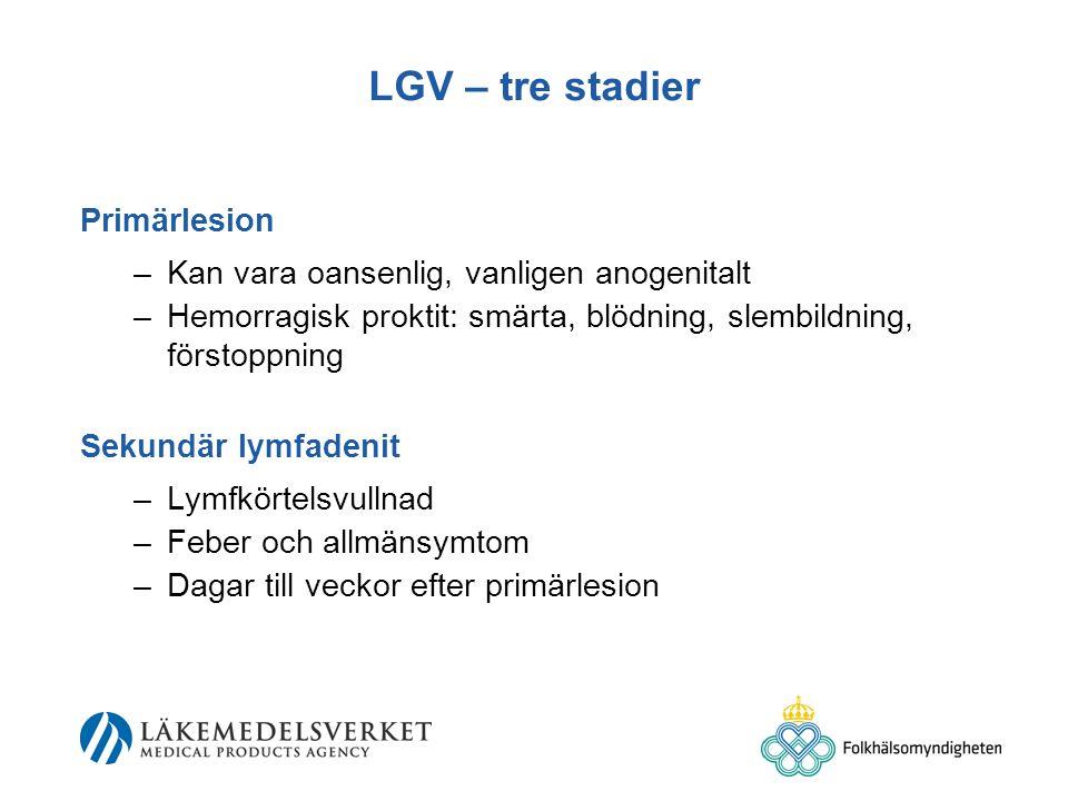 LGV – tre stadier Primärlesion
