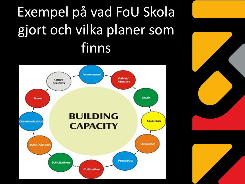 Exempel på vad FoU Skola gjort och vilka planer som finns