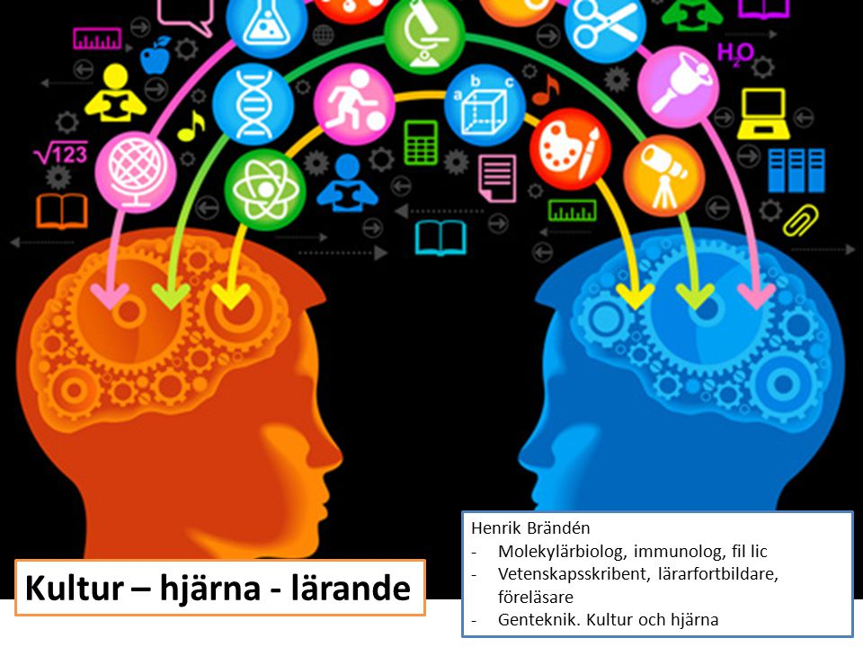 Kultur – hjärna - lärande