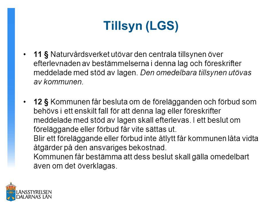 Tillsyn (LGS)