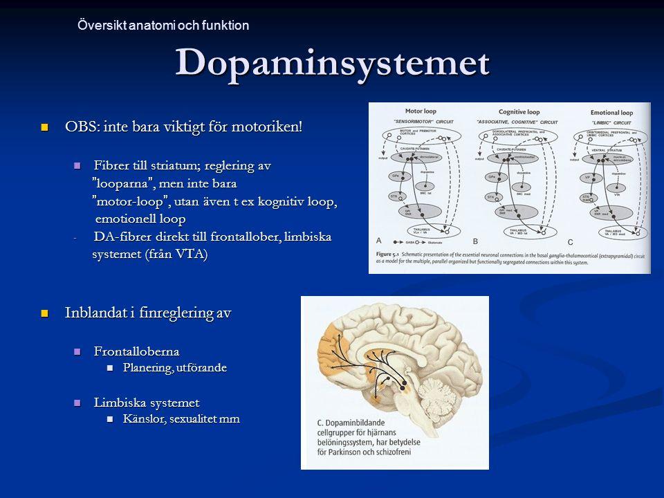 Dopaminsystemet OBS: inte bara viktigt för motoriken!