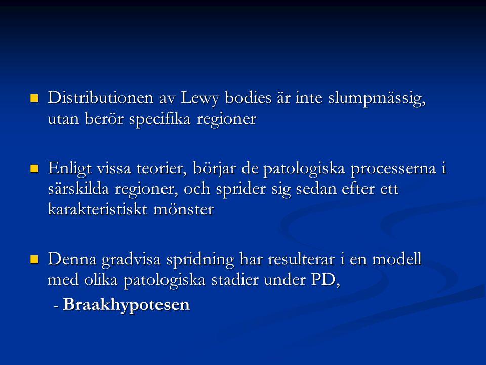 Distributionen av Lewy bodies är inte slumpmässig, utan berör specifika regioner