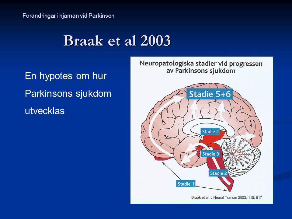 Braak et al 2003 En hypotes om hur Parkinsons sjukdom utvecklas