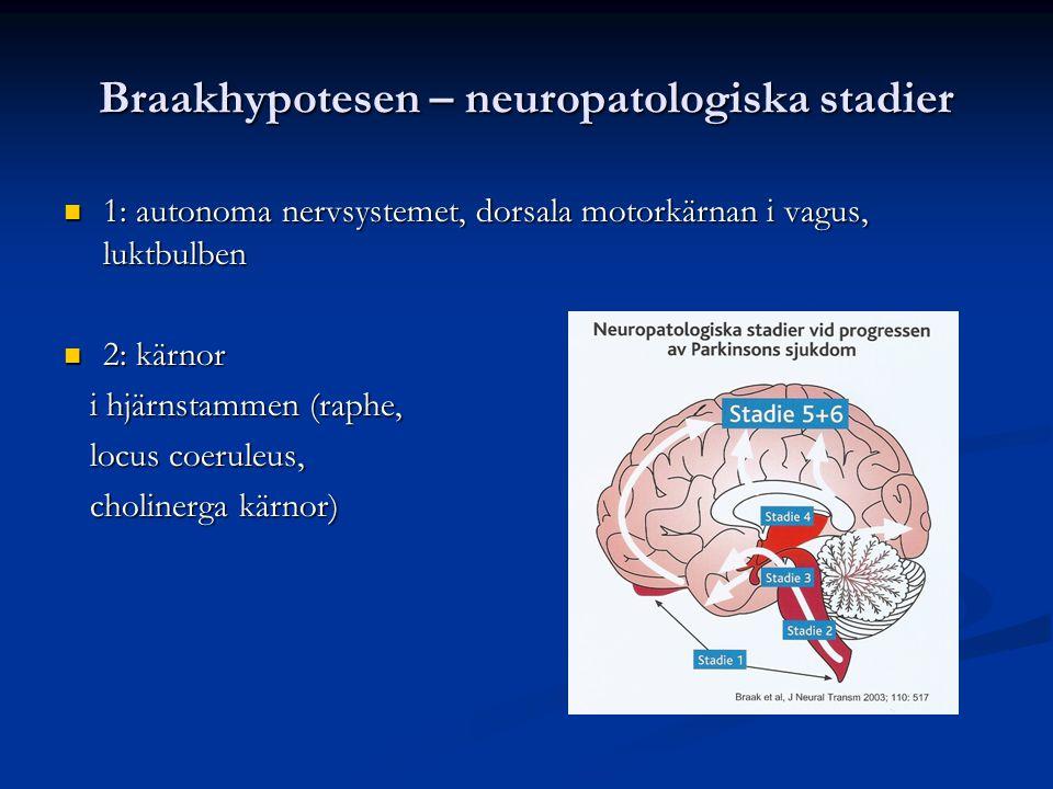 Braakhypotesen – neuropatologiska stadier