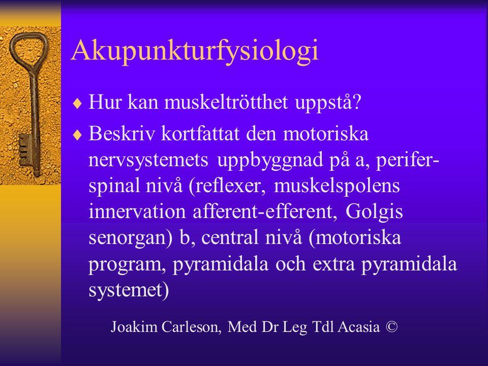 Akupunkturfysiologi Hur kan muskeltrötthet uppstå
