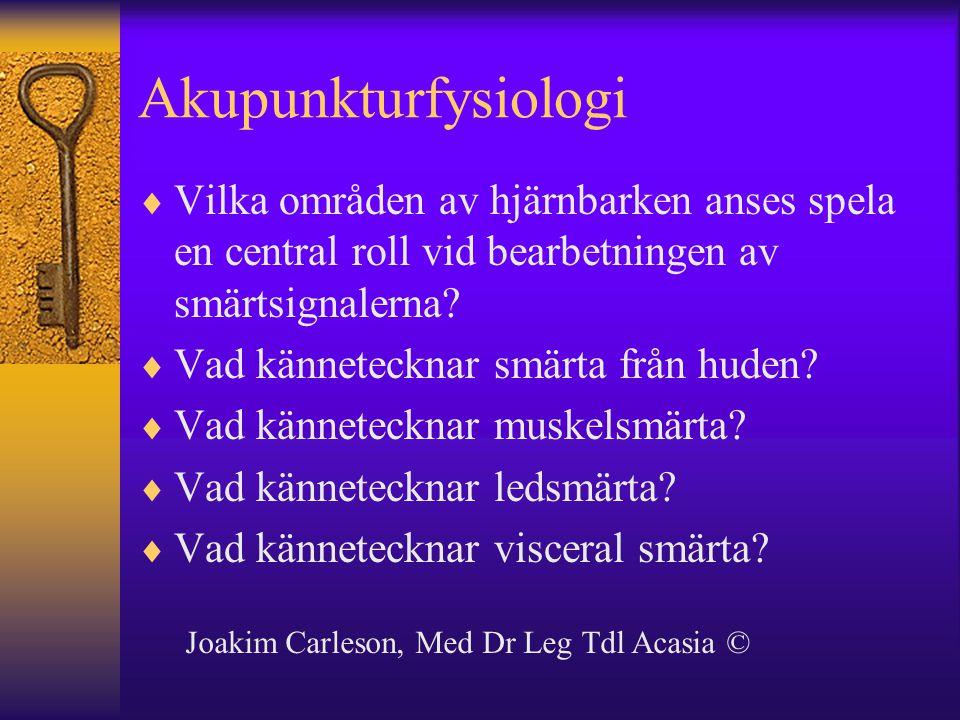 Akupunkturfysiologi Vilka områden av hjärnbarken anses spela en central roll vid bearbetningen av smärtsignalerna