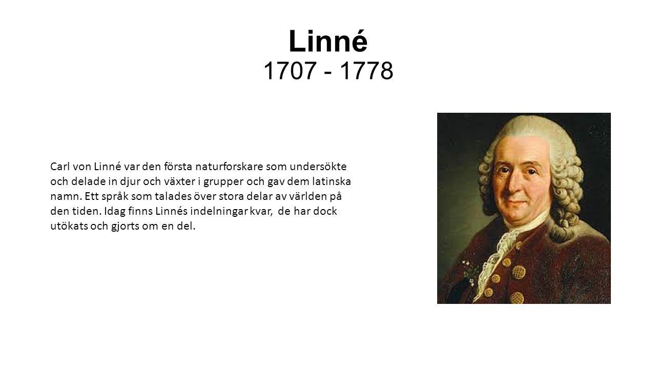 Linné 1707 - 1778
