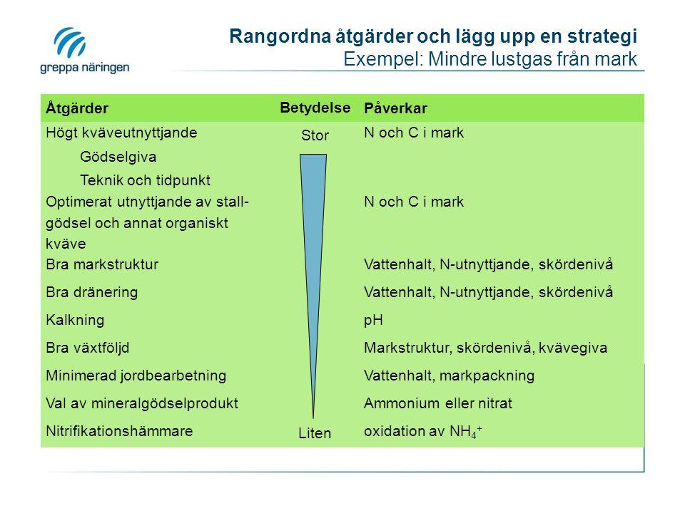 Rangordna åtgärder och lägg upp en strategi Exempel: Mindre lustgas från mark