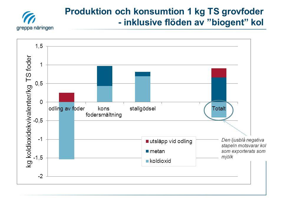 Produktion och konsumtion 1 kg TS grovfoder - inklusive flöden av biogent kol
