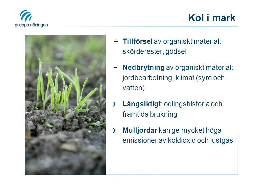 Kol i mark Tillförsel av organiskt material: skörderester, gödsel
