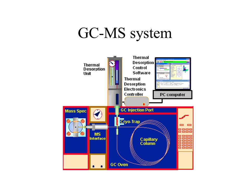 GC-MS system