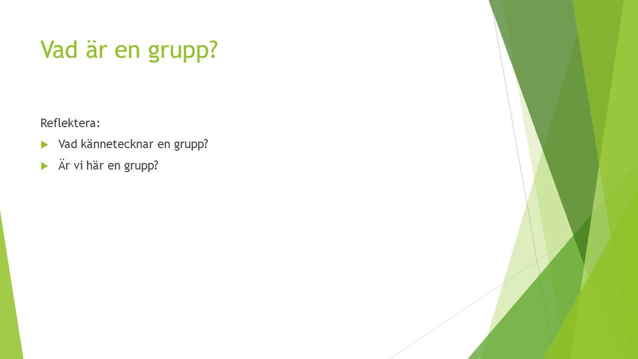 Vad är en grupp Reflektera: Vad kännetecknar en grupp