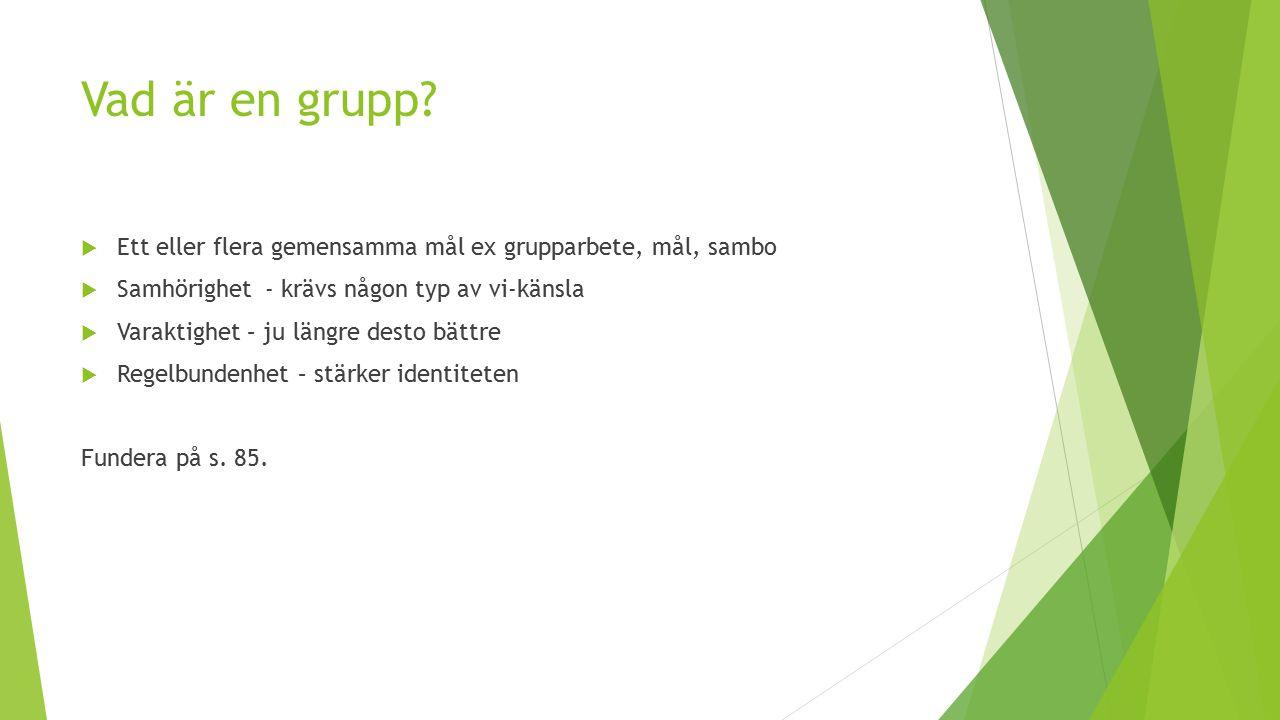 Vad är en grupp Ett eller flera gemensamma mål ex grupparbete, mål, sambo. Samhörighet - krävs någon typ av vi-känsla.