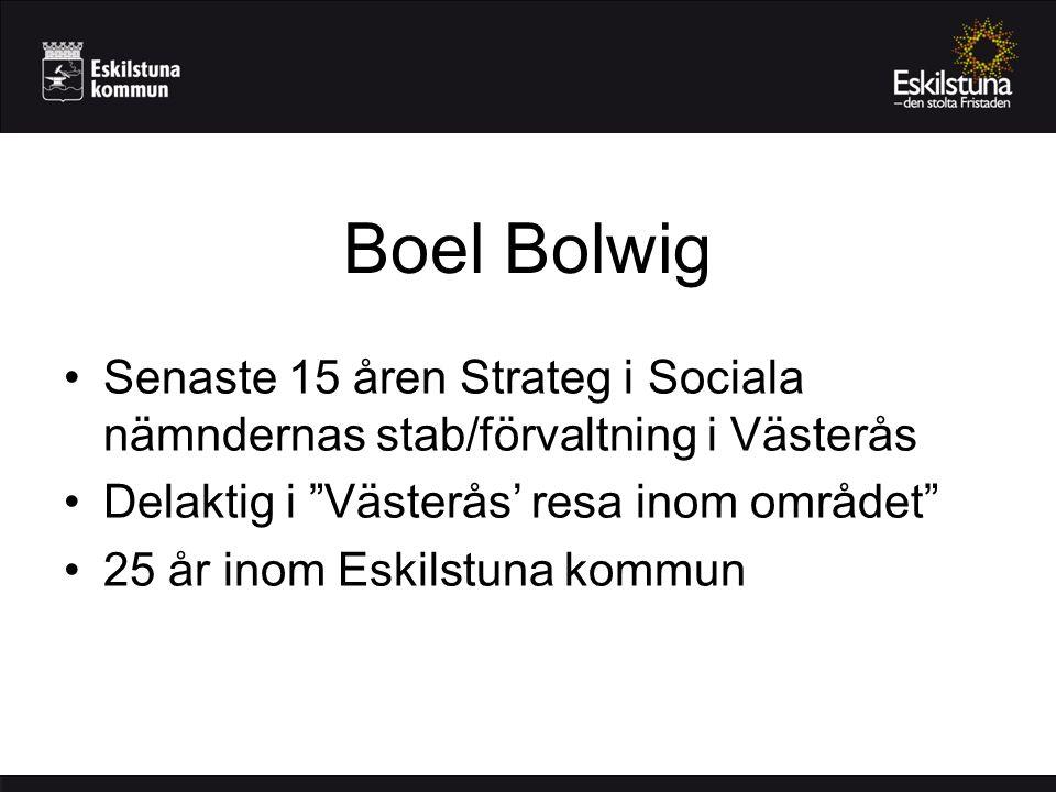 Boel Bolwig Senaste 15 åren Strateg i Sociala nämndernas stab/förvaltning i Västerås. Delaktig i Västerås' resa inom området