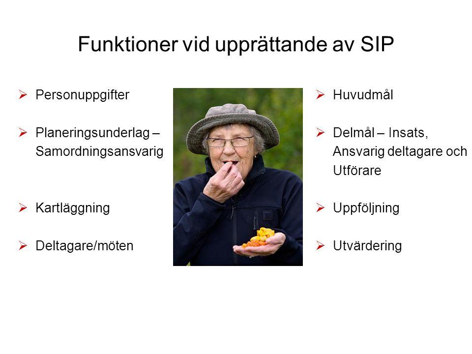 Funktioner vid upprättande av SIP