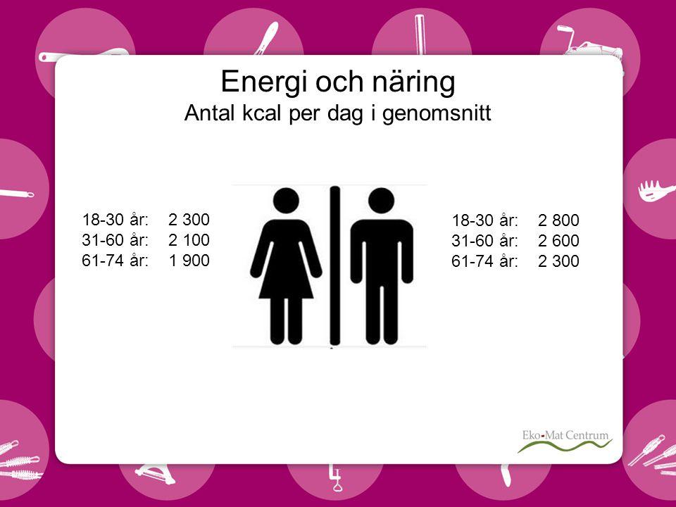 Energi och näring Antal kcal per dag i genomsnitt