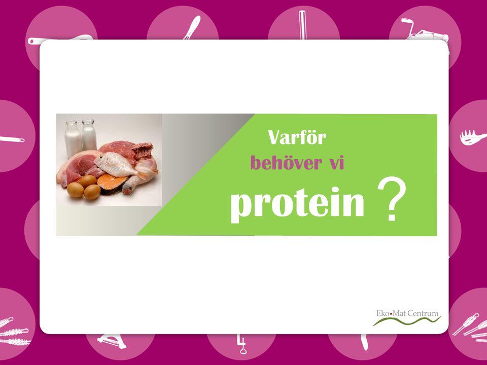 Varför behöver vi protein