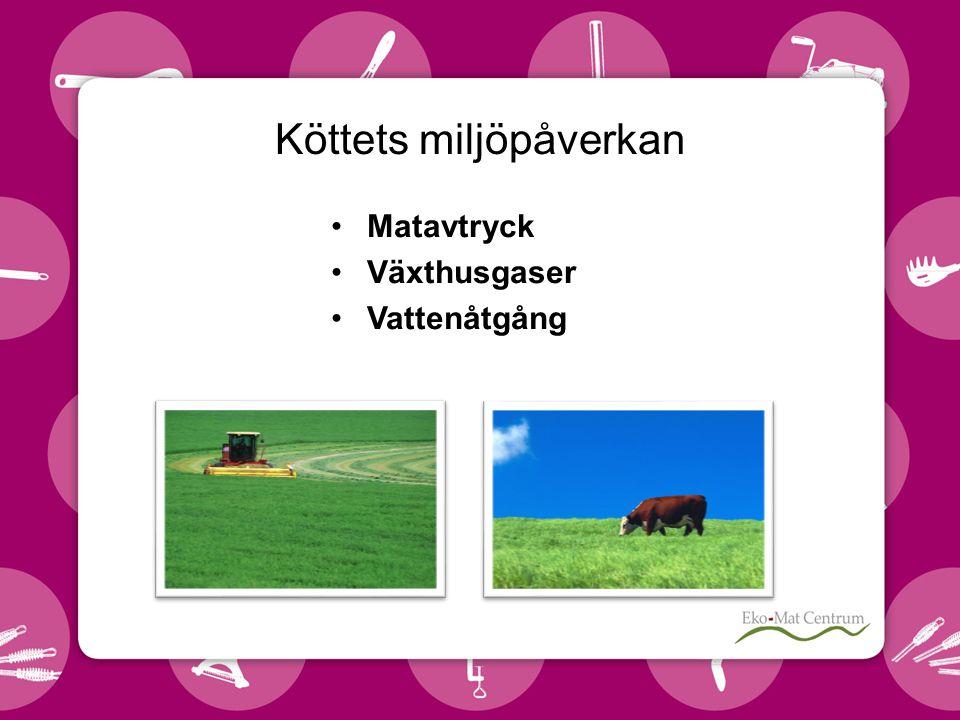 Köttets miljöpåverkan