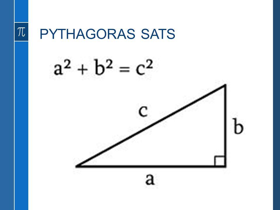 PYTHAGORAS SATS Skogssnäppa