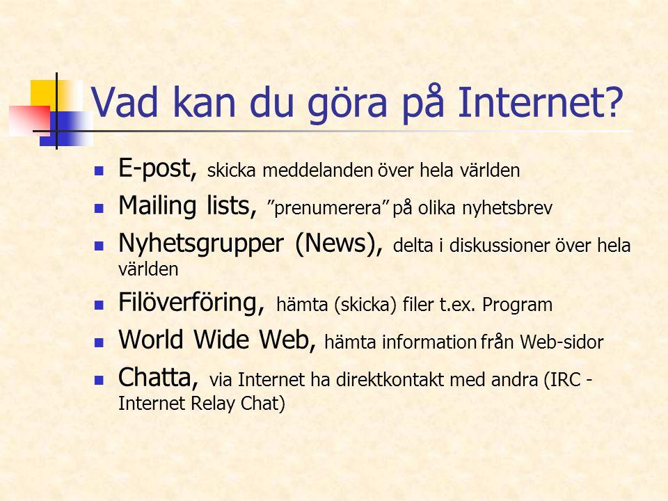 Vad kan du göra på Internet