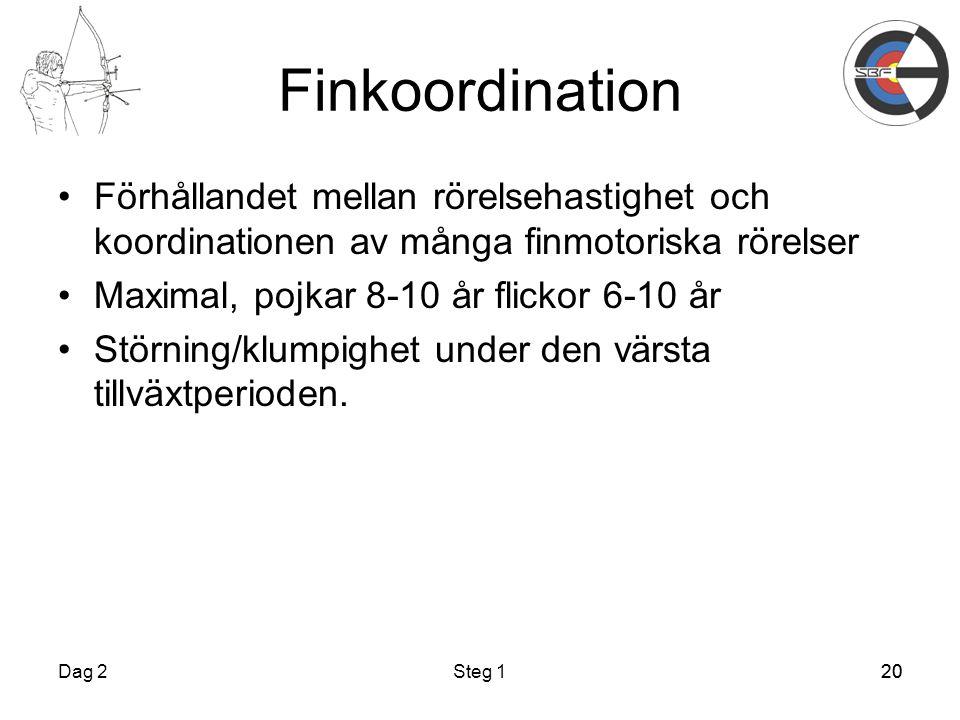 Finkoordination Förhållandet mellan rörelsehastighet och koordinationen av många finmotoriska rörelser.