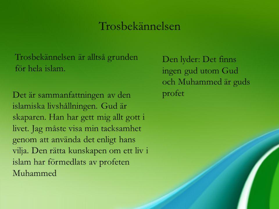 Trosbekännelsen Trosbekännelsen är alltså grunden för hela islam.