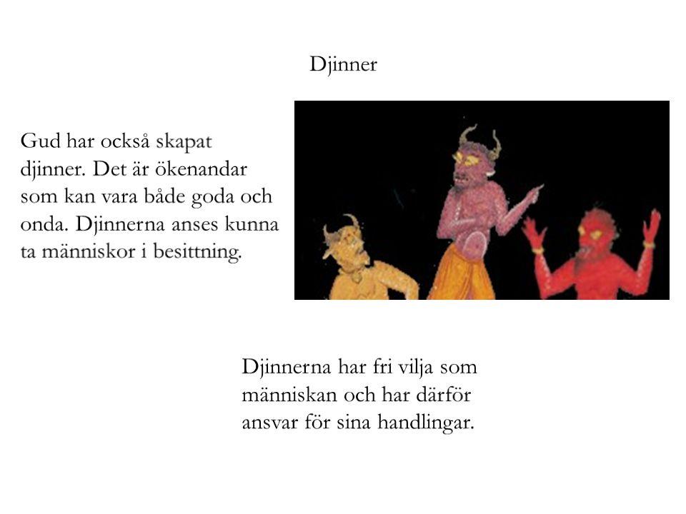Djinner Gud har också skapat djinner. Det är ökenandar som kan vara både goda och onda. Djinnerna anses kunna ta människor i besittning.