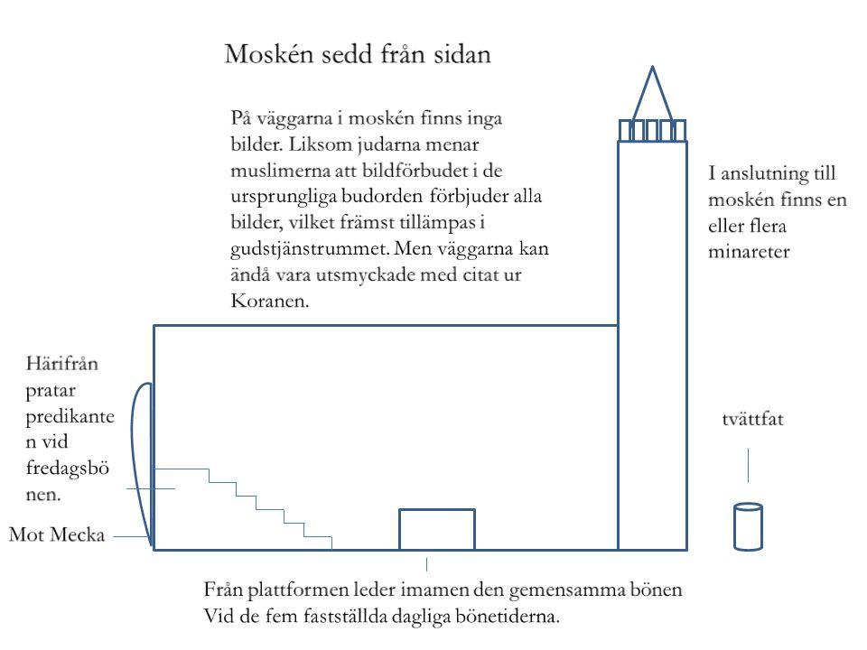 Moskén sedd från sidan