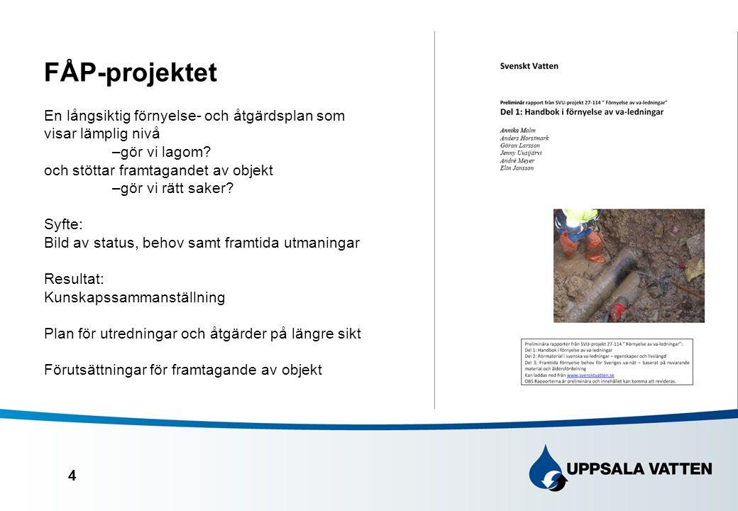 FÅP-projektet En långsiktig förnyelse- och åtgärdsplan som