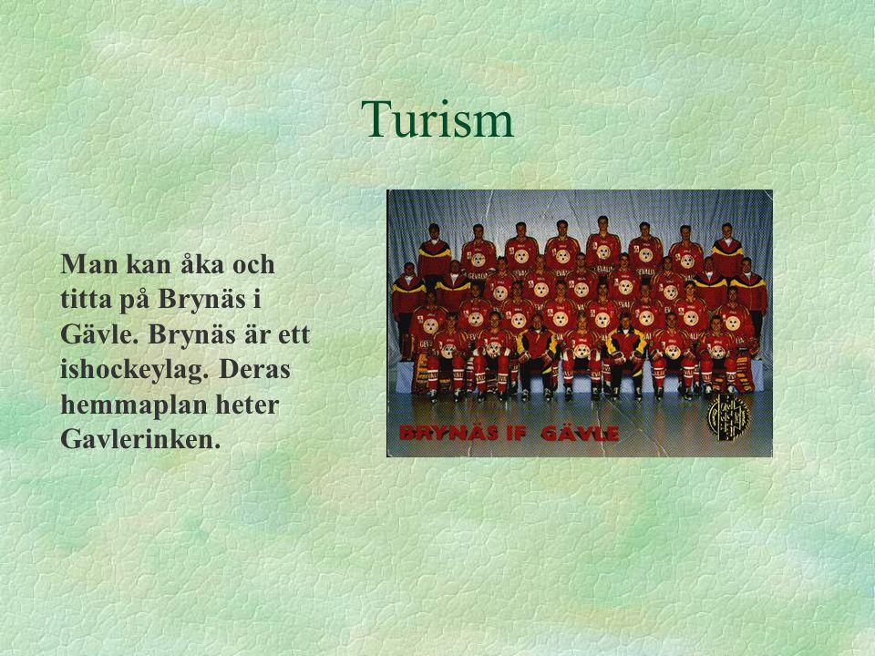 Turism Man kan åka och titta på Brynäs i Gävle. Brynäs är ett ishockeylag.
