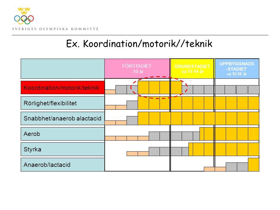 Ex. Koordination/motorik//teknik