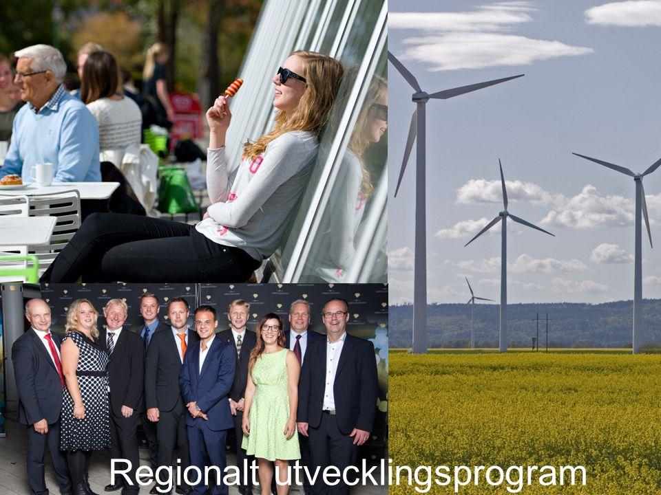Regionalt utvecklingsprogram