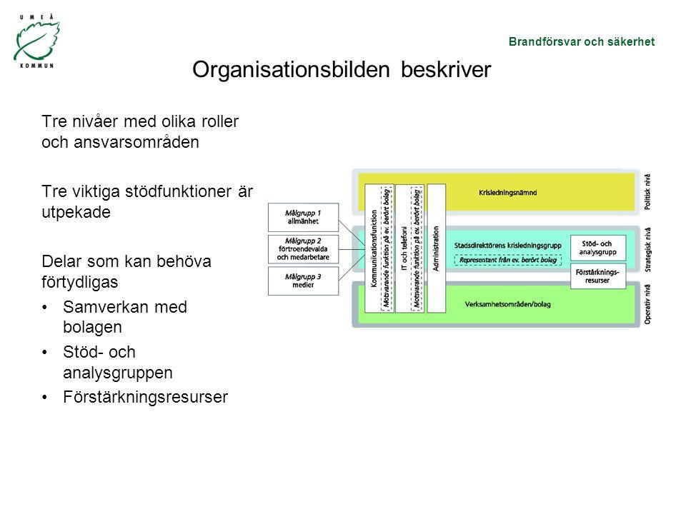 Organisationsbilden beskriver