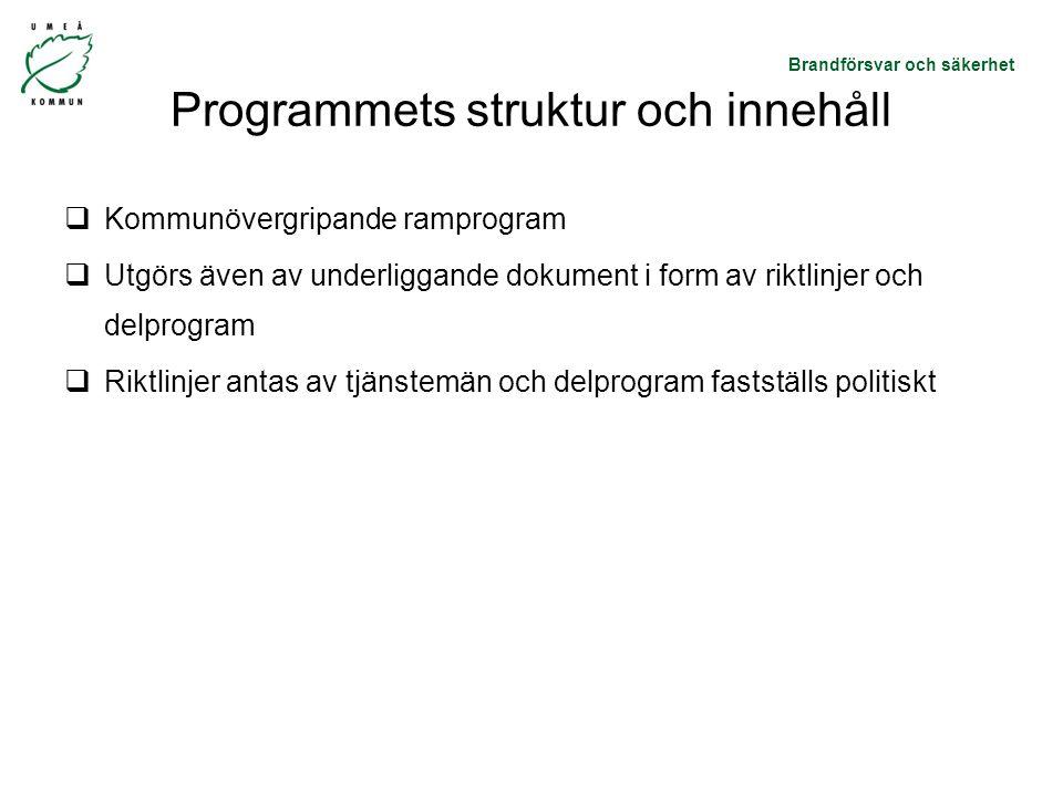 Programmets struktur och innehåll