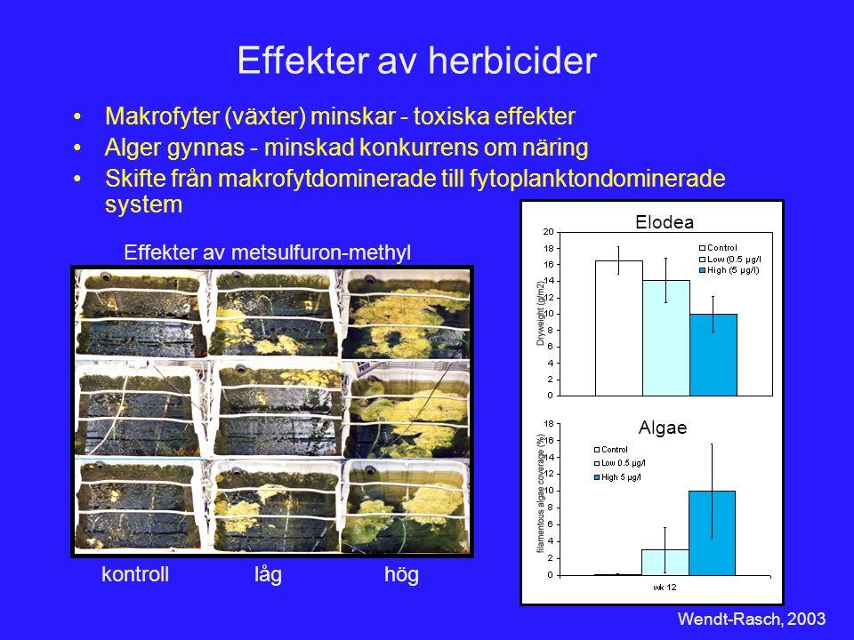 Effekter av herbicider