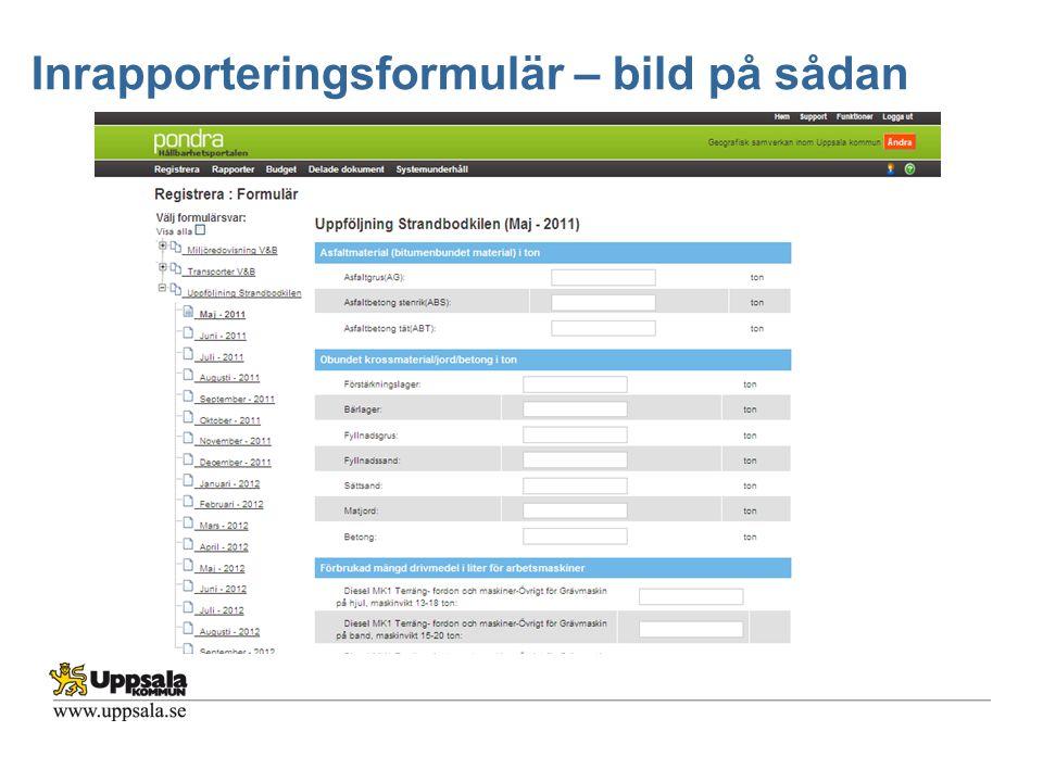 Inrapporteringsformulär – bild på sådan