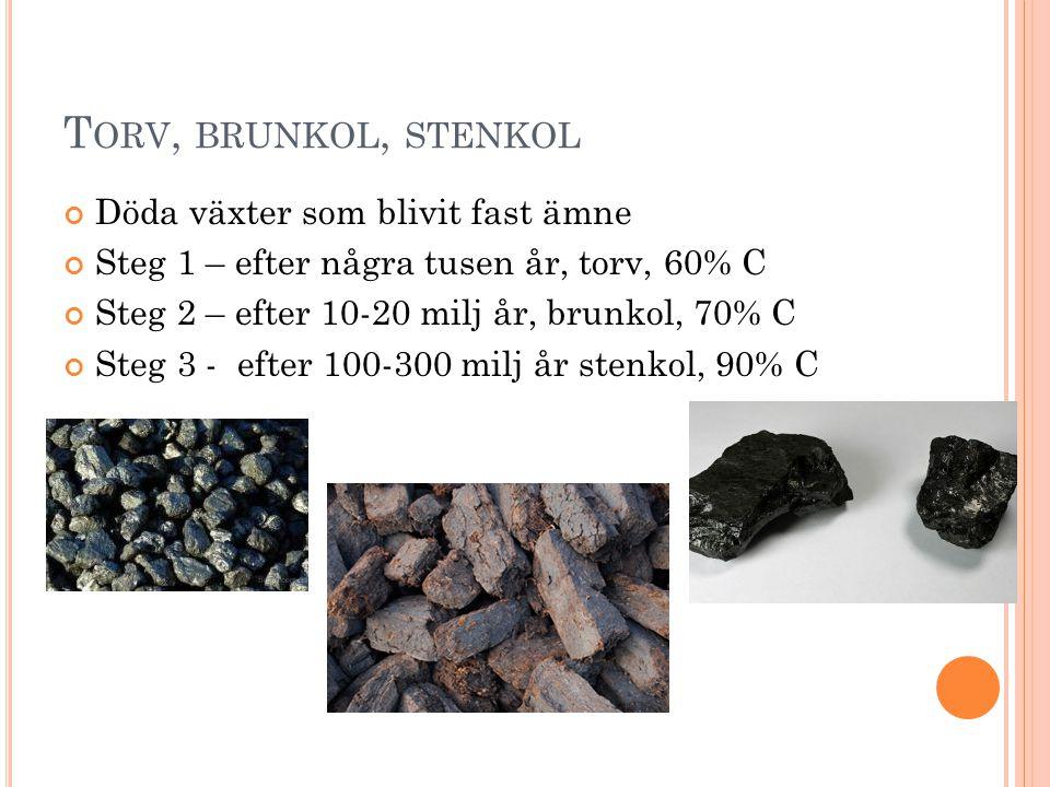 Torv, brunkol, stenkol Döda växter som blivit fast ämne