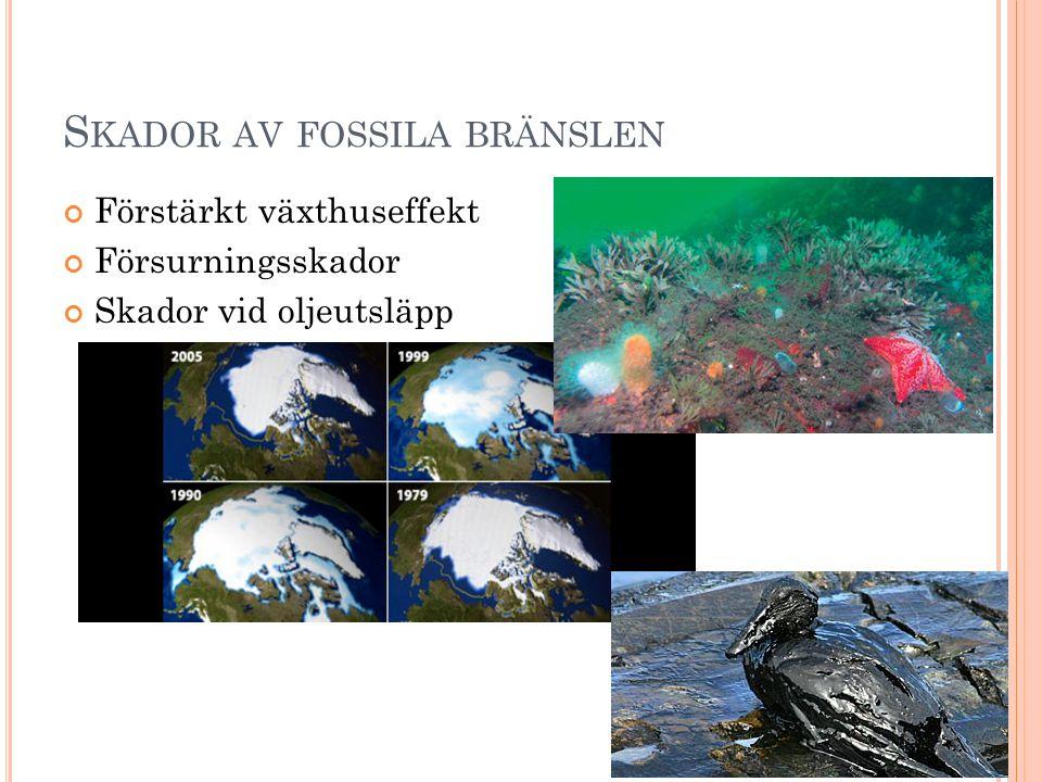 Skador av fossila bränslen