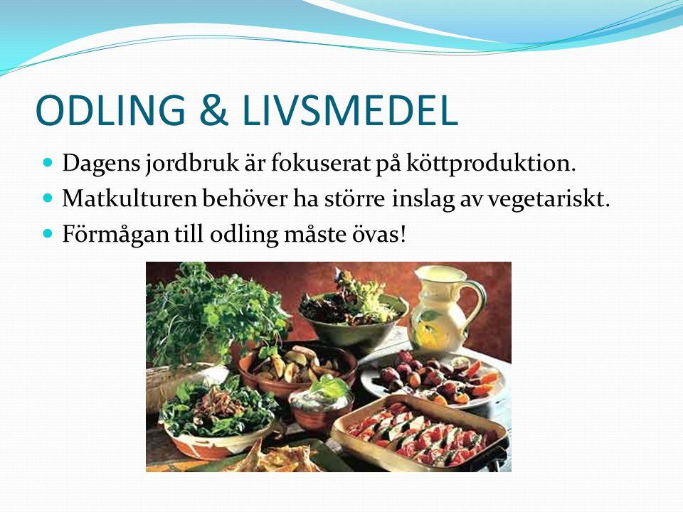 ODLING & LIVSMEDEL Dagens jordbruk är fokuserat på köttproduktion.