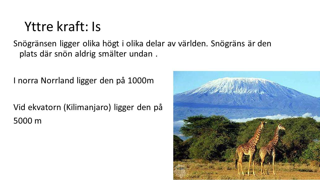 Yttre kraft: Is Snögränsen ligger olika högt i olika delar av världen. Snögräns är den plats där snön aldrig smälter undan .