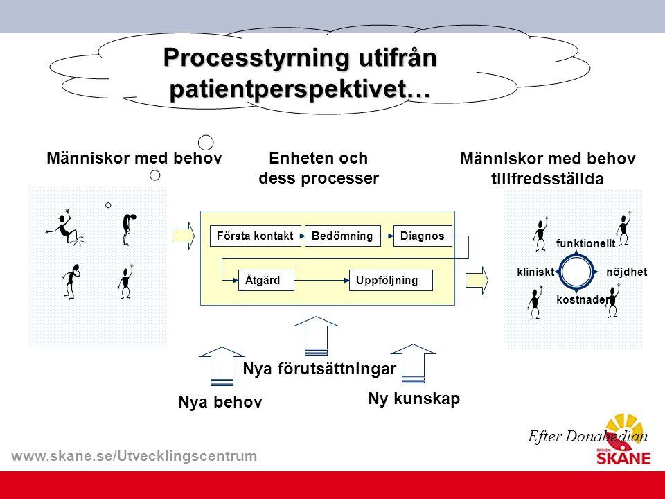 Processtyrning utifrån patientperspektivet…
