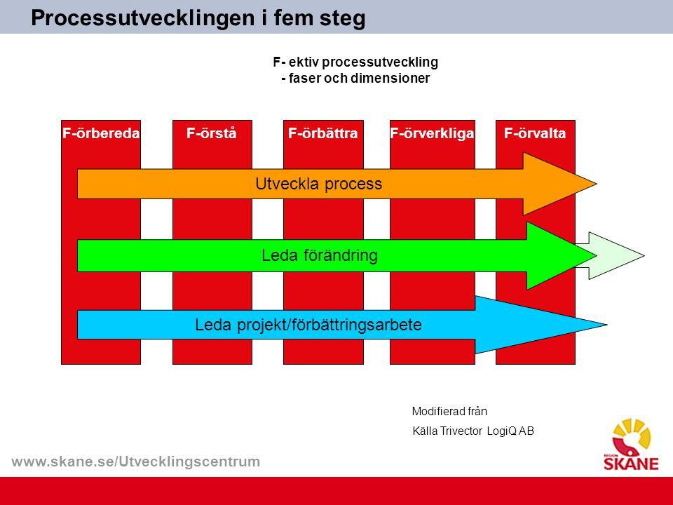 F- ektiv processutveckling - faser och dimensioner