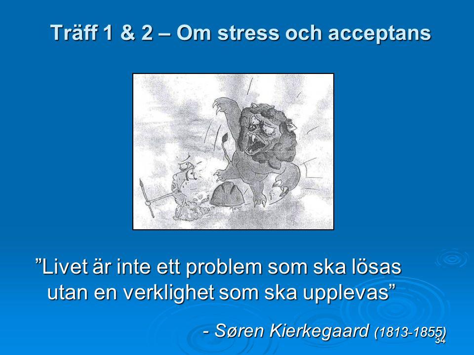 Träff 1 & 2 – Om stress och acceptans