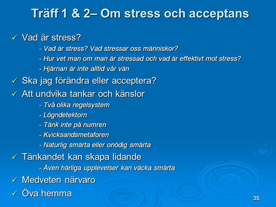 Träff 1 & 2– Om stress och acceptans