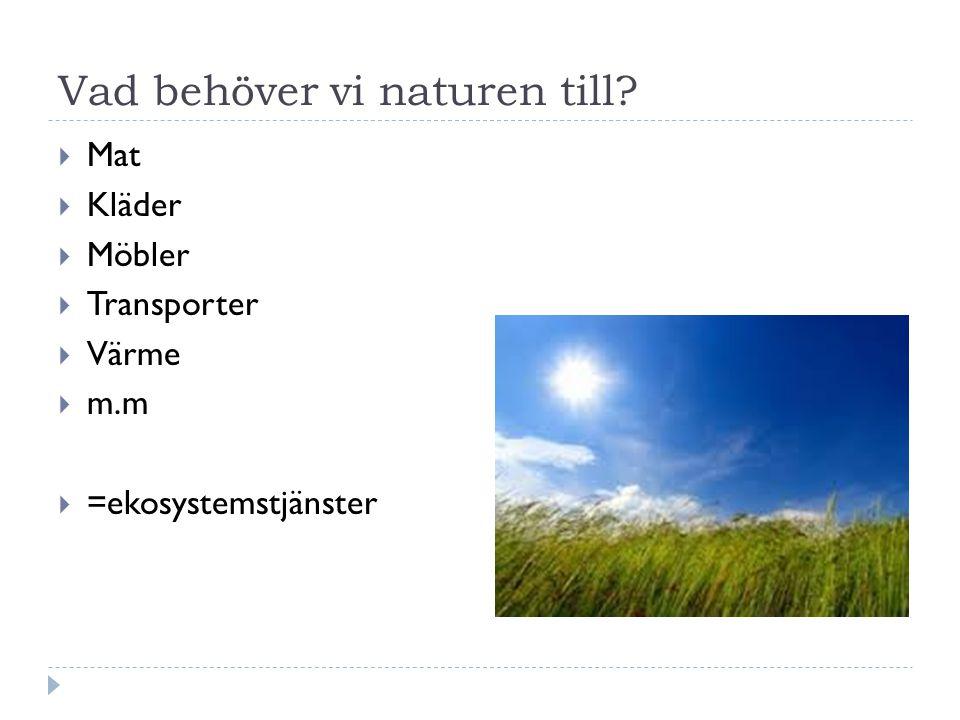 Vad behöver vi naturen till