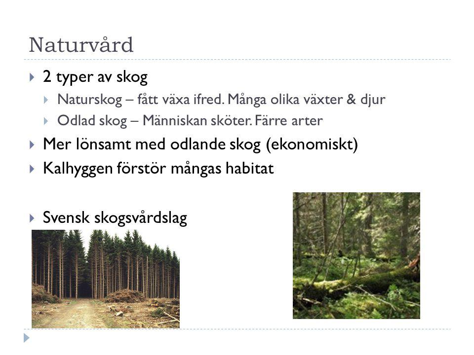 Naturvård 2 typer av skog Mer lönsamt med odlande skog (ekonomiskt)