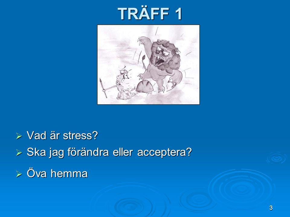Träff 1 Vad är stress Ska jag förändra eller acceptera Öva hemma