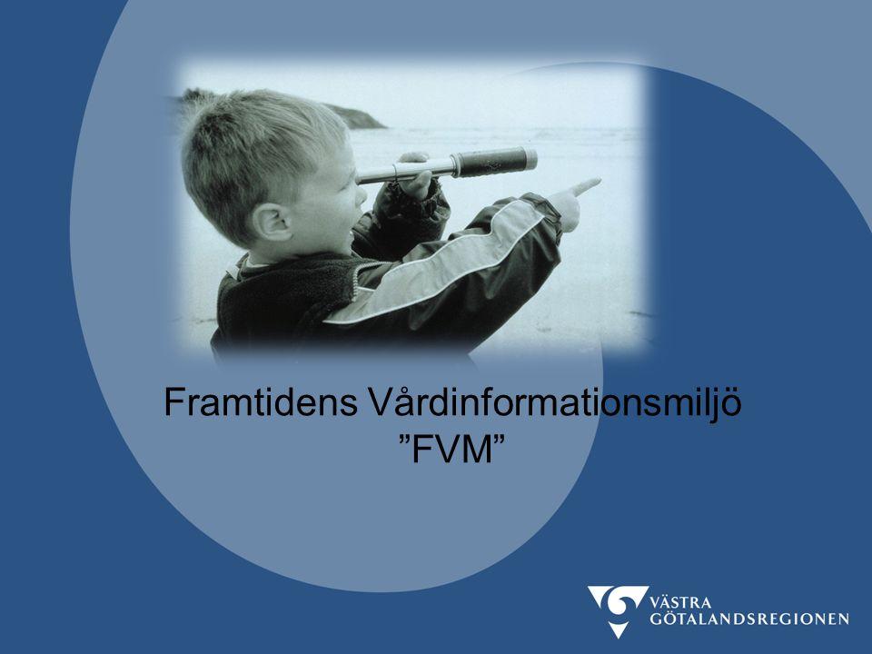 Framtidens Vårdinformationsmiljö FVM