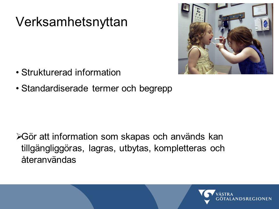 Verksamhetsnyttan Strukturerad information