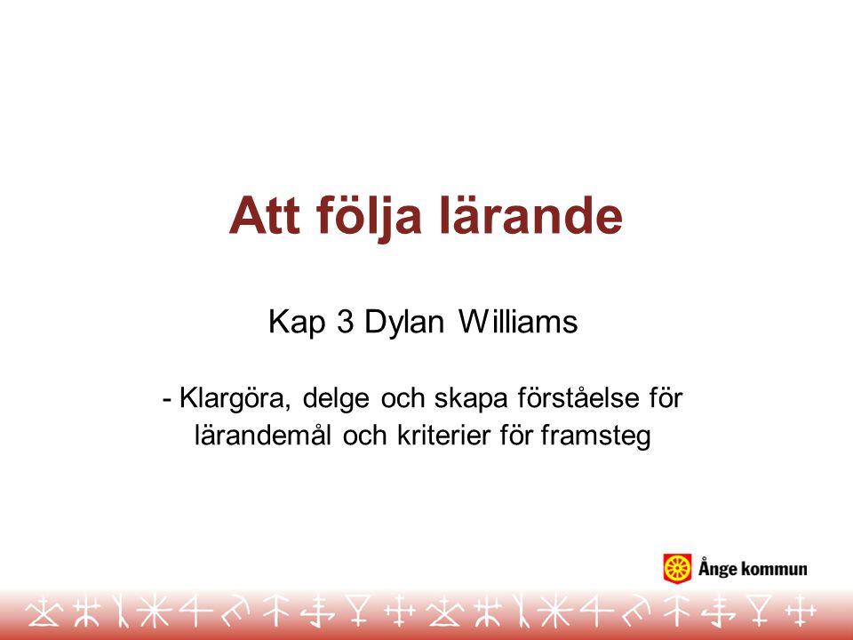 Att följa lärande Kap 3 Dylan Williams